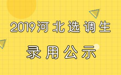 2019河北承德市选调生拟录用人选公示